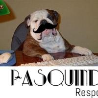 O Pasquindie Responde #13
