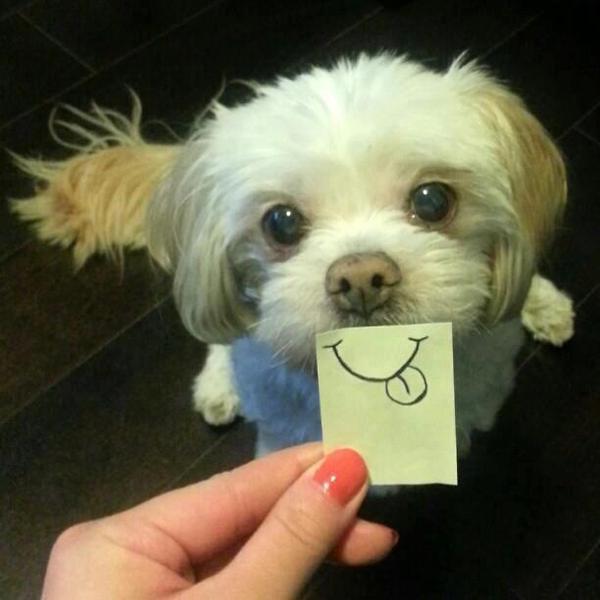 dog_emoticon